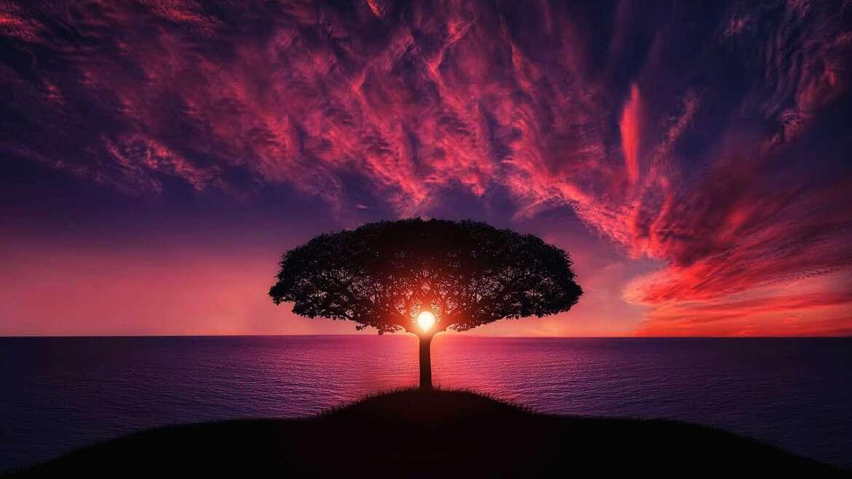 Ennast ja armastust saab otsida väljast aga leida seest.